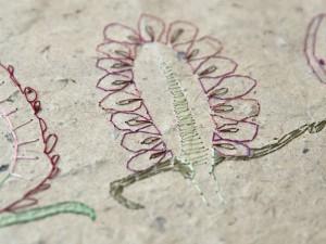 http://www.jennabonistalli.com/files/gimgs/th-37_Berries_detail1v2.jpg